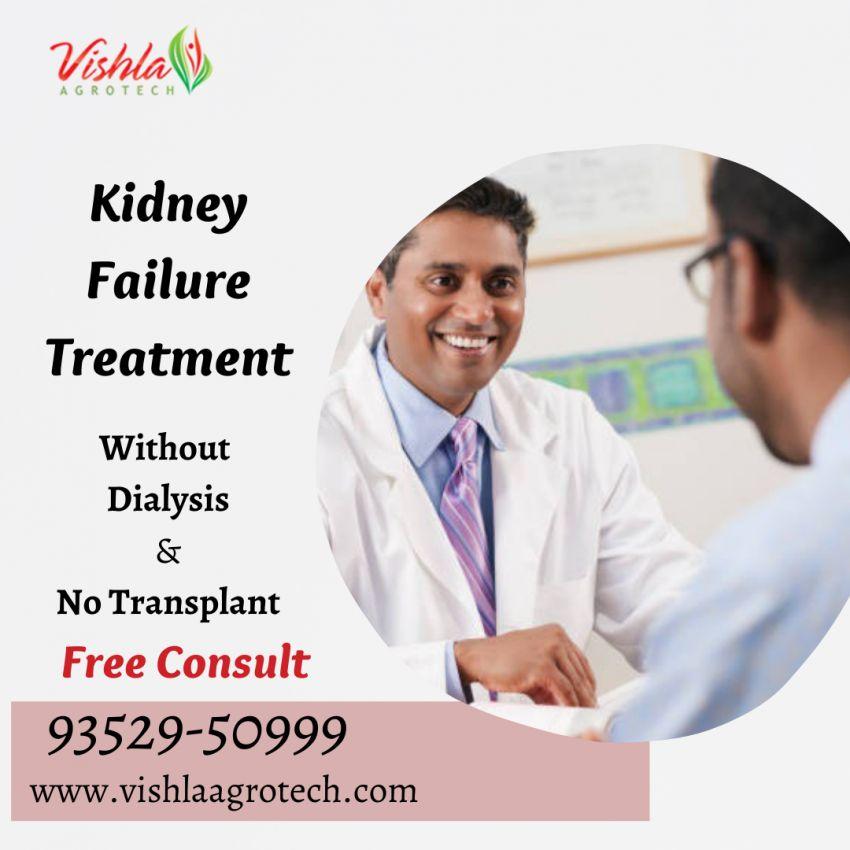 Kidney failure treatnent by Ayurveda